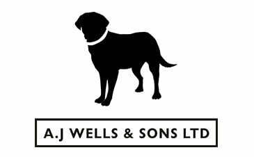 aj-wells-sponsors-of-ventnor-rfc-2014-15